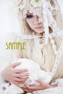sample4.jpg
